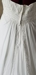 David's Bridal Dresses - Plus size Davids Bridal dress with butterfly vail